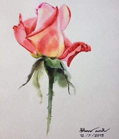 Over 35 new ideas for painting watercolor flowers with pink roses - Blumen Rosen - Blumen Watercolor Flowers Tutorial, Watercolor Rose, Watercolor Cards, Watercolor Illustration, Watercolor Paintings, Watercolours, Botanical Art, Painting & Drawing, Flower Art
