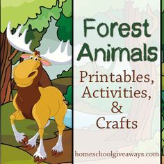Forest Animals Printables, Activities and Crafts - Homeschool Giveaways Forest Animal Crafts, Forest Crafts, Forest Animals, Nature Crafts, Zoo Animals, Wild Animals, Forest Theme, Woodland Forest, Woodland Theme