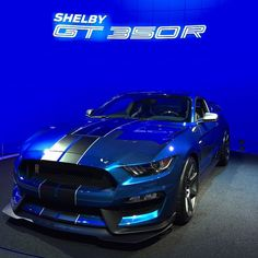 Ford Mustang Shelby GT in beautiful blue Mustang Shelby Cobra, Shelby Gt 500, Ac Cobra, Ford Shelby, Ford Mustang Gt, 2014 Mustang, Us Cars, Sport Cars, Lamborghini