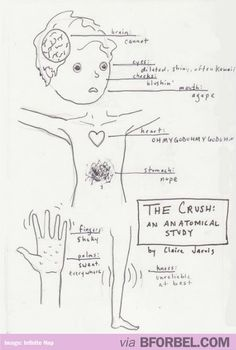 What Happens To Your Body When You See Your Crush…