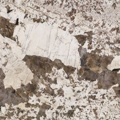 Bianco Antico, a natural stone granite from Arizona Tile, is also known as Royal Silk and has a cool white and gray background with burgundy and taupe tones. Cheap Countertops, Concrete Countertops, Hacienda Style Homes, Gray Island, Cream Cabinets, Granite Tile, Rustic Feel, Custom Homes, Natural Stones