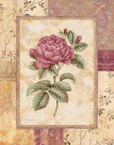 Provence Rose I Art Print