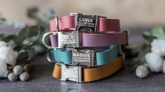 Cool Dog Collars, Leather Cat Collars, Dog Accesories, Leather Accessories, Planeta Animal, Personalized Cat Collars, Dog Collar With Name, Custom Dog Tags, Cute Dogs