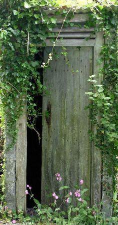 umla    ////   Lovely green door with green vines surrounding it.