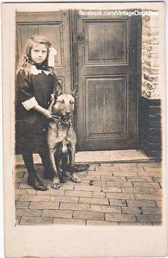 """Vintage Dog A Day"" from Facebook. c.1910 Origin: France or Belgium  Format: Postcard"