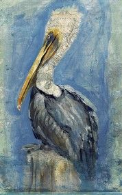 Brown Pelican Art by Anthony Morrow