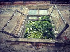 #lackoj #window # ruin #architecture #oldhouse #samsunggalaxya52017 #Ruzomberok #slovakia