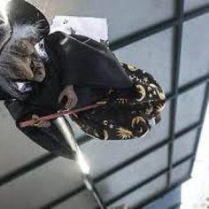 Offerte lavoro Genova  Sabato 6 gennaio il comune diventa un paese delle favole con i personaggi dei cartoni animati  #Liguria #Genova #operatori #animatori #rappresentanti #tecnico #informatico A Orero il raduno delle Befane