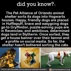 Yes, I did know this! I love this idea! What a special way for people to connect with the animals and give them a forever home.