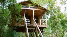 For a unique getaway, branch out (literally) and stay at one of these incredible treehouse hotels.