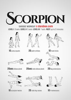 DareBee Workouts │ Scorpion Workout - Full Body Strength Toning with focus on Core, Butt, & Legs