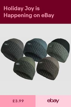 ad0acaa88b5 BEANIE HAT BOBBY CHUNKY KNIT WINTER MENS ROCKJOCK (THINSULATE) THERMAL LINED