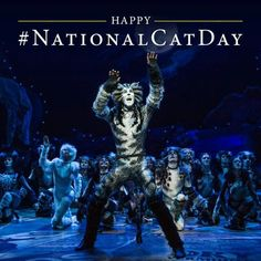 The cats at the jellicle ball hd from cats the musical the film cats musical theatre broadway random stuff cleaning random things stopboris Image collections