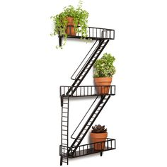 Design Ideas Fire Escape Shelf ($99) ❤ liked on Polyvore featuring home, home decor and house plant pots