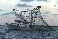 la shrimp boat images | Shrimp Boat | Veins In The Gulf