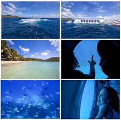 Subcat #adventure, which dives down to the sea bed for an up-close - and dry - look at myriad, multi-hued tropical fish and coral in #Antigua & #St. Lucia.