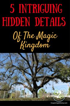 The Imagineers went to great lengths to completely submerse guests in the magic. Here are 5 intriguing hidden details of the Magic Kingdom! Have you seen all of these hidden details? Disney World Magic Kingdom, Disney World Parks, Walt Disney World Vacations, Disney Vacation Planning, Orlando Vacation, Disney World Planning, Have A Great Vacation, Great Vacations, Disney World Tips And Tricks
