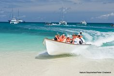 Visitors arrive on the beaches of Cousin Island.... in style