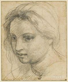 Tête de femme coiffée d'un turban et vue de trois quarts de Andrea del Sarto (dit), Andrea d'Angiolo
