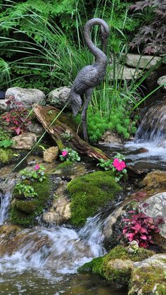 A Pretty Garden Pond - the colorful succulents go well with the statuesque swan!