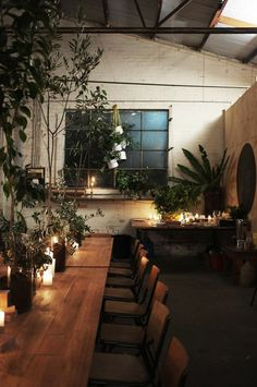 plants + candlelight and wood