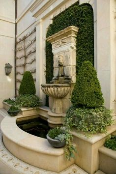 Co Co's Collection : Formal garden # structure # roses # boxwood. Antique wall fountain with fig ivy and boxwood