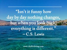 Isn't it funny how day by day nothing changes, but when you look back everything is different. - C.S. Lewis