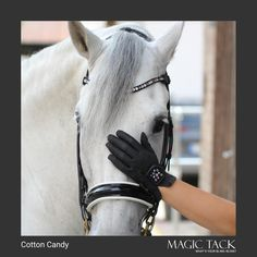 White horse with double bridle and MagicTack browband for horses. Perfect matching riding gloves Equestrian Style, European Fashion, Outfit Of The Day, Your Style, Fashion Accessories, Gloves, Horses, Leather, Outfits