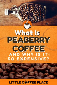 """If you spend any time searching across the internet for different varieties of coffee, you may have stumbled upon the """"peaberry"""" phenomenon that has sprung up in recent years. We share what exactly peaberry coffee is, why it is so well loved, and why it's so expensive! #littlecoffeeplace #peaberrycoffee Little's Coffee, Drip Coffee, Coffee Shop, Coffee Facts, How To Make Coffee, Coffee Roasting, Barista, Searching, Espresso"""