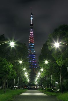 Illuminated Tokyo Tower, Japan. Photo by cate♪ on Flickr.