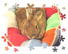 giant plump Ugli Donut bunny rabbit bed for a by thehareapparent, £20.00