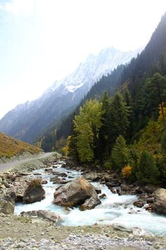 Sonmarg- Kashmir — in Jammu, Jammu and Kashmir. Srinagar, Incredible India, Amazing Nature, Nature Pictures, Travel Pictures, Kashmir India, Paradise On Earth, India Tour, Adventure Is Out There