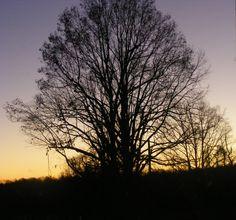 ending light of day