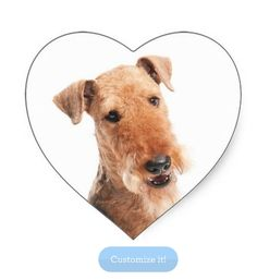 Airedale Puppy Dog Heart Stickers  http://www.zazzle.com/airdale_terrier_puppy_dog_heart_sticker_label-217605846543281787?rf=238669615131463341