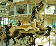 carousel jumpers syracuse ny