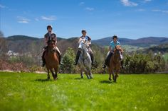 Galopem po zielonej łące! Z przyjaciółmi, blisko natury – poczuj wolność i radość… http://www.hotelklimek.pl/sport/jazda-konna |  Gallop on the green meado! Feel the freedom and happiness with your friends… http://www.hotelklimek.pl/sport/jazda-konna #relaks #galop #konie #horses #fun #nature