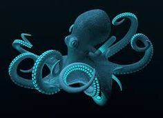Image result for sea creatures images