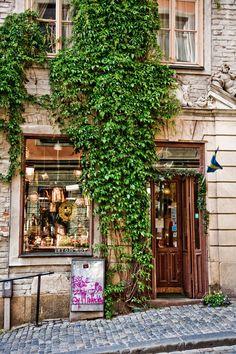 French Cafe - Paris France  Dansk Photography