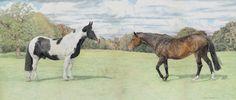 Morgan-and-Tessa.jpg (900×385)