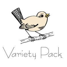 Ball variety pack
