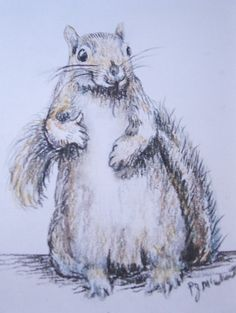 """The famous """"thumbs up"""" Flash Mob squirrel holding her own! Martha from CircleofLifeVA"""