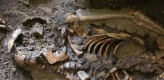 Caucasus hunter-gatherer - 'Fourth strand' of European ancestry originated with hunter-gatherers isolated by Ice Age | University of Cambridge