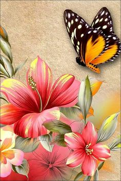 DIY Diamond Painting Coral Pink Hibiscus and Butterfly - craft kit – TurquoiseRoads Butterfly Wallpaper, Butterfly Painting, Butterfly Crafts, Butterfly Flowers, Beautiful Butterflies, Flower Art, Beautiful Flowers, Art Floral, Pictures To Paint