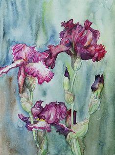 Iris Flowers, Flower Art, Painting, Watercolors, Flowers, Art, Watercolor Painting, Kunst, Art Floral