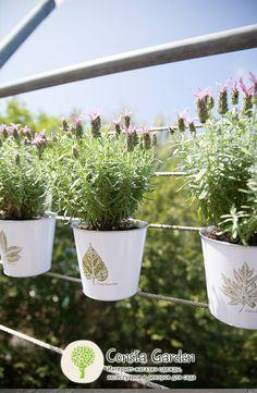 Кашпо металлическое «Листья» Esschert Design.Кашпо для растений с изящным принтом «Листья» предназначено для декорирования Вашего сада, террасы или балкона.