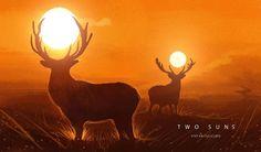 Two Suns by Stefan Celic
