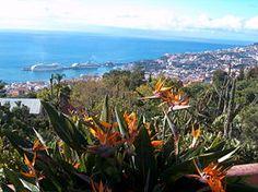 Madeira (Funchal), Portugal