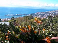 Madeira (Funchal), Portugal