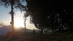 KOKOH GALLERY: MYSTICAL MORNING IN SELOREJO