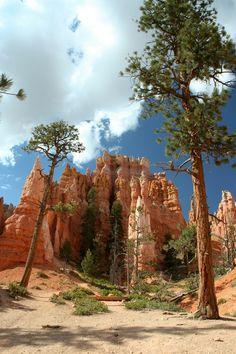 Queens Garden Trail Bryce Canyon National Park Utah ...